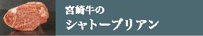 宮崎牛のシャトーブリアン