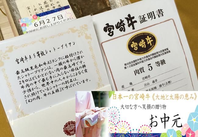 ブログ用お中元 2